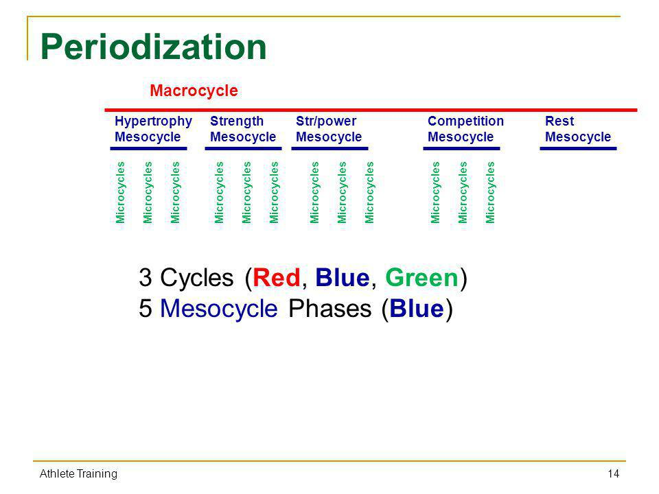 Periodization 3 Cycles (Red, Blue, Green) 5 Mesocycle Phases (Blue)