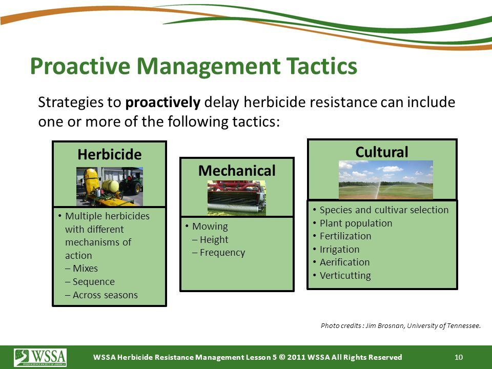 Proactive Management Tactics