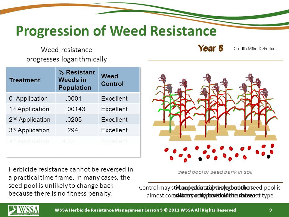 Progression of Weed Resistance