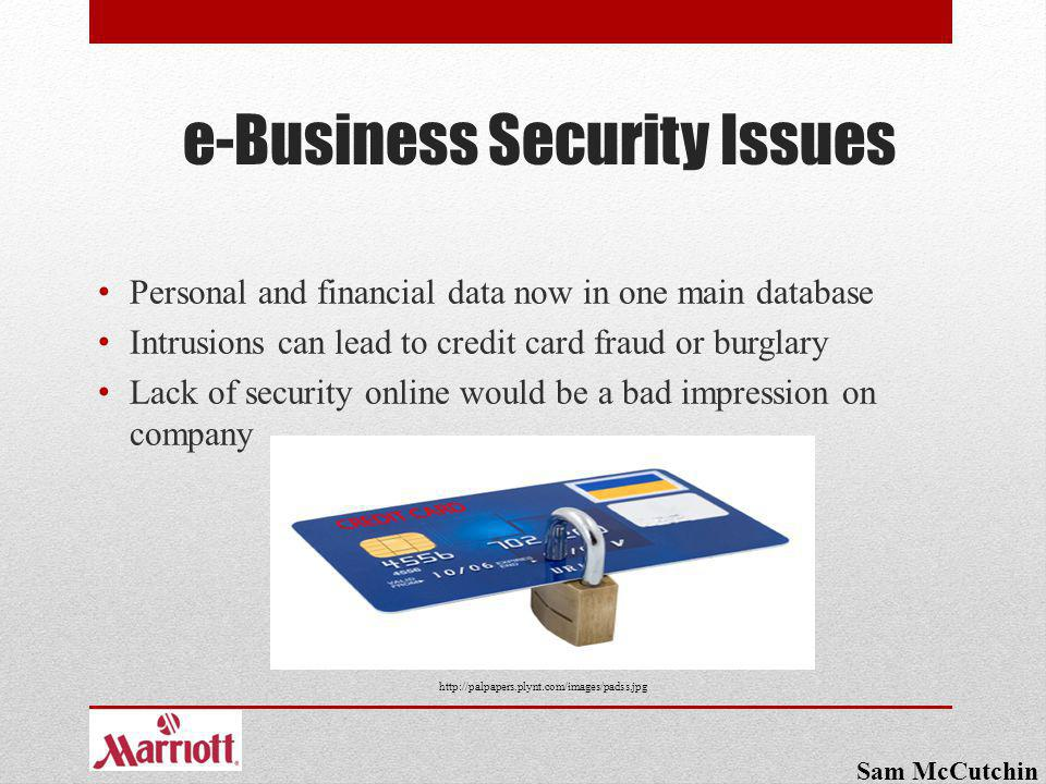 e-Business Security Issues