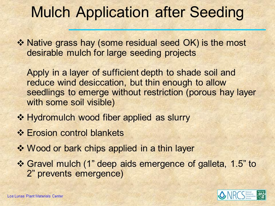 Mulch Application after Seeding