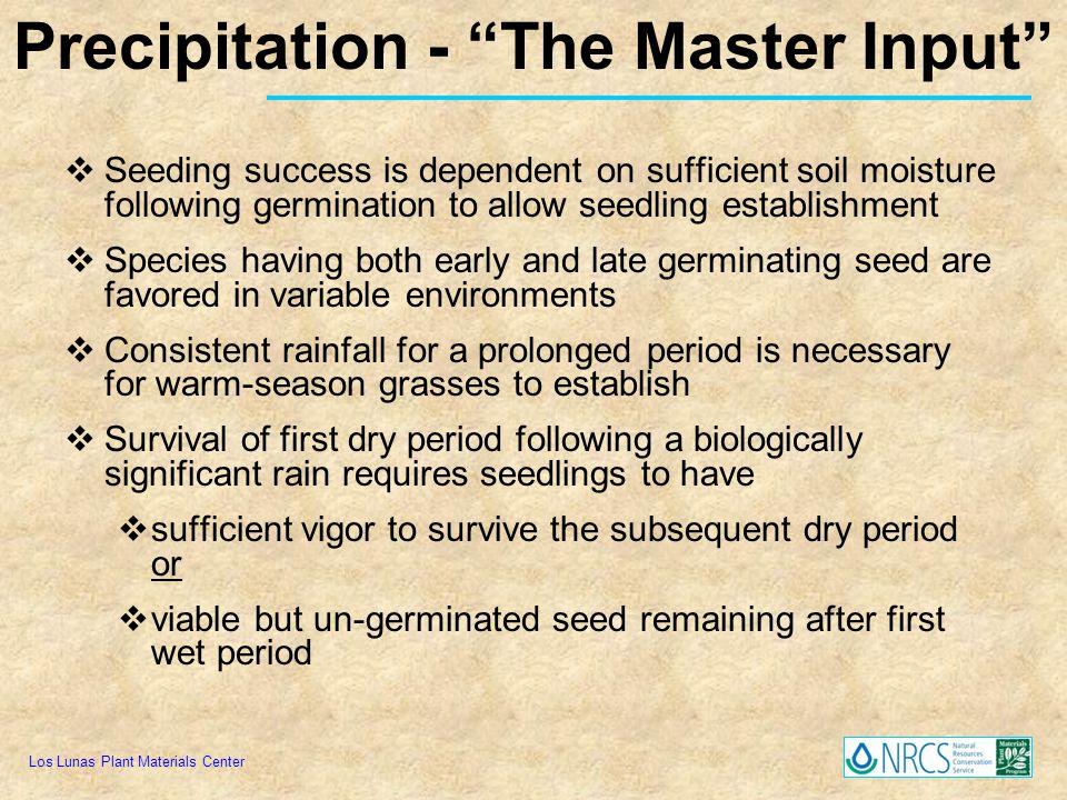 Precipitation - The Master Input