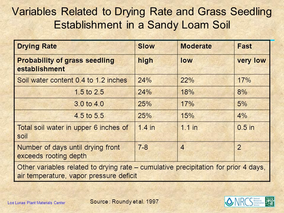 Variables Related to Drying Rate and Grass Seedling Establishment in a Sandy Loam Soil