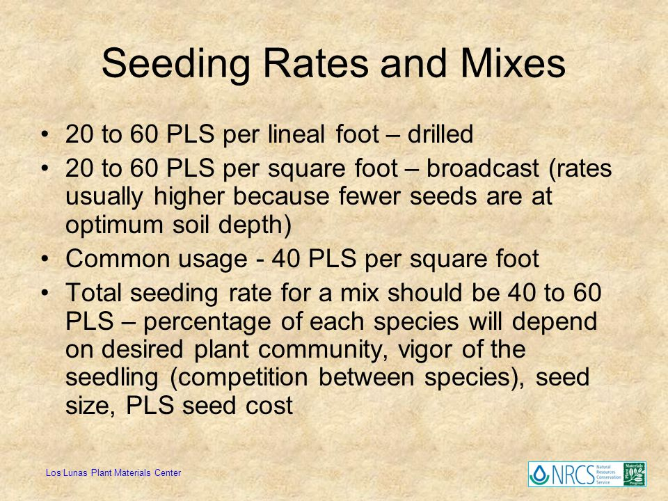 Seeding Rates and Mixes
