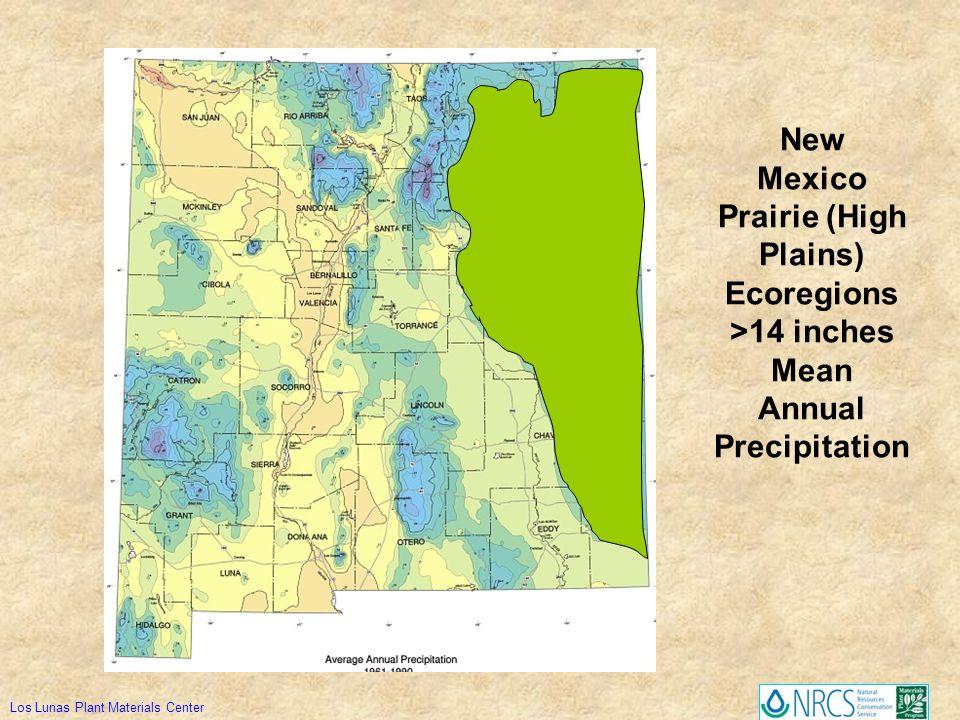 New Mexico Prairie (High Plains) Ecoregions >14 inches Mean Annual Precipitation