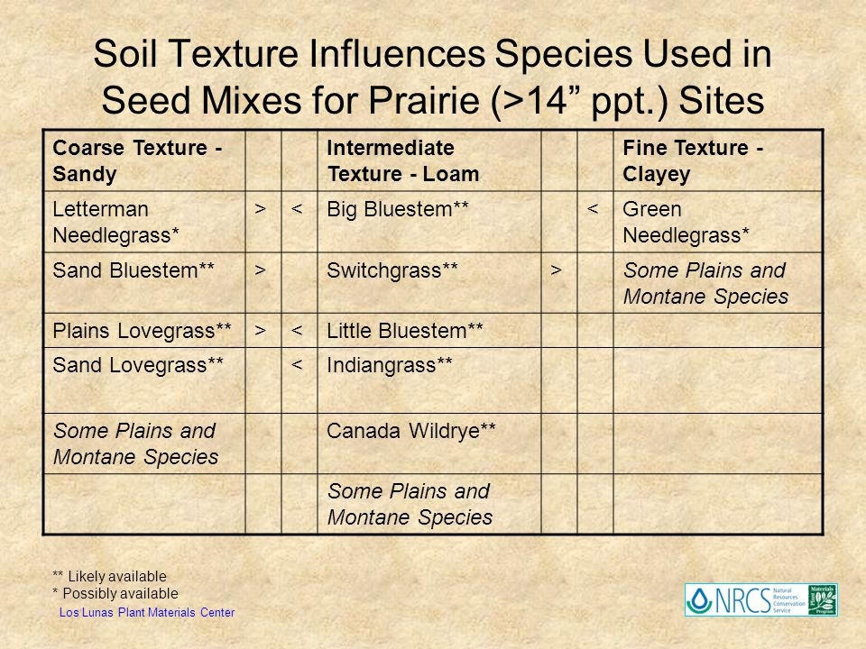 Soil Texture Influences Species Used in Seed Mixes for Prairie (>14 ppt.) Sites