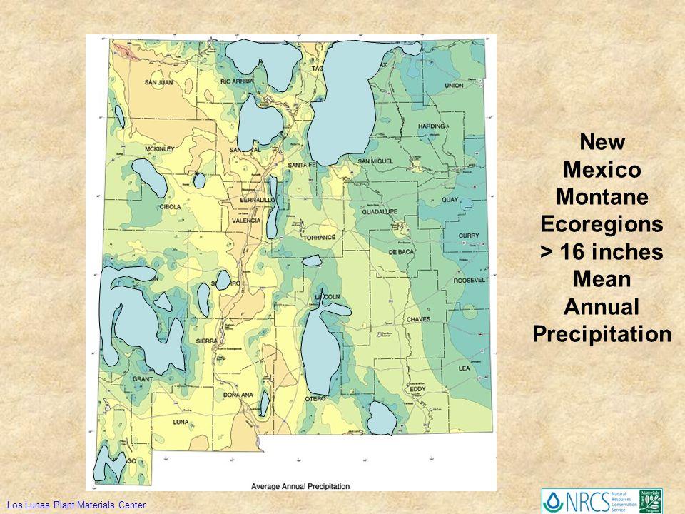 New Mexico Montane Ecoregions > 16 inches Mean Annual Precipitation