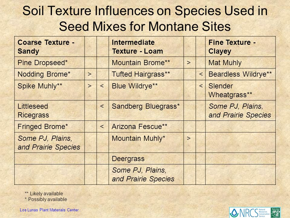 Soil Texture Influences on Species Used in Seed Mixes for Montane Sites