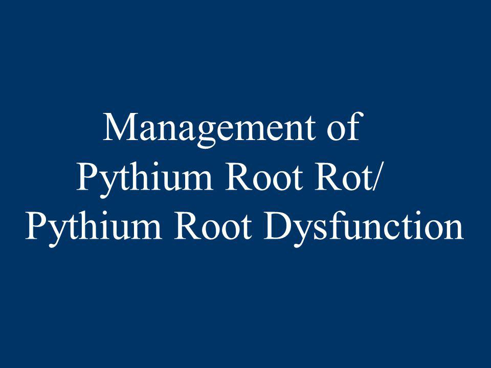 Management of Pythium Root Rot/ Pythium Root Dysfunction