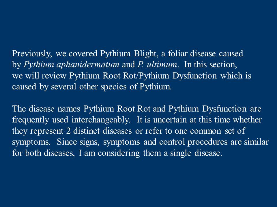 Previously, we covered Pythium Blight, a foliar disease caused