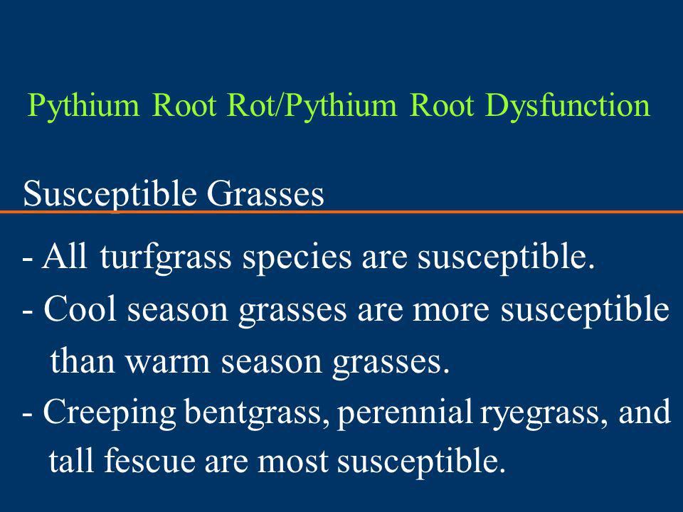 All turfgrass species are susceptible.