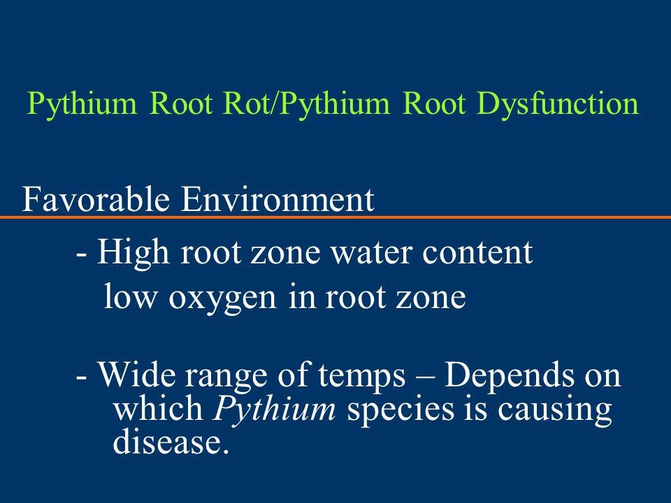 Favorable Environment - High root zone water content