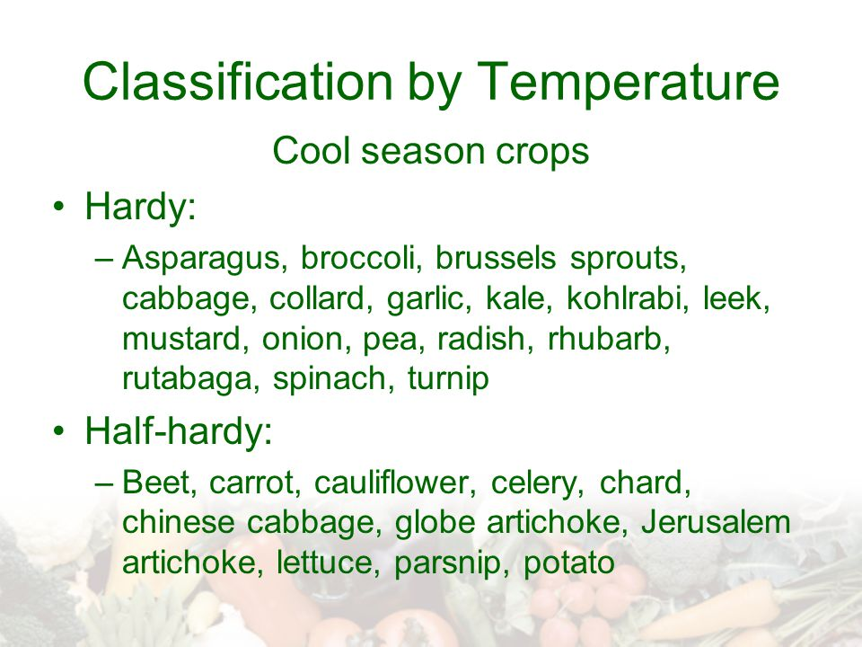 Classification by Temperature