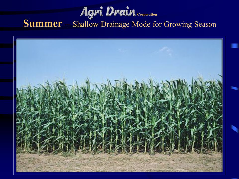 Summer – Shallow Drainage Mode for Growing Season
