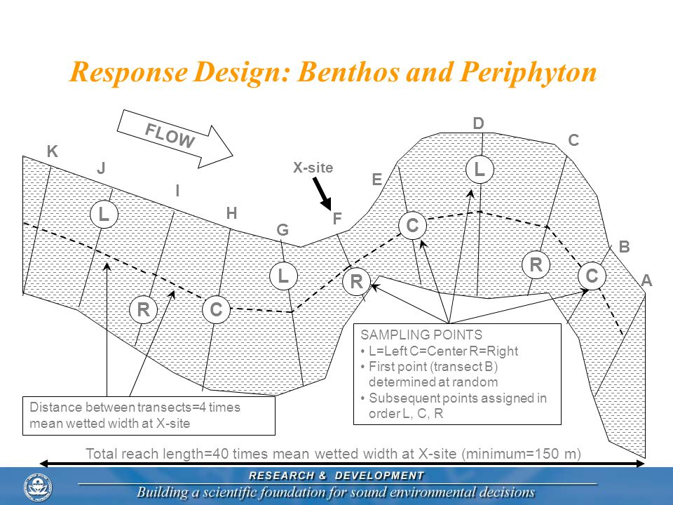 Response Design: Benthos and Periphyton