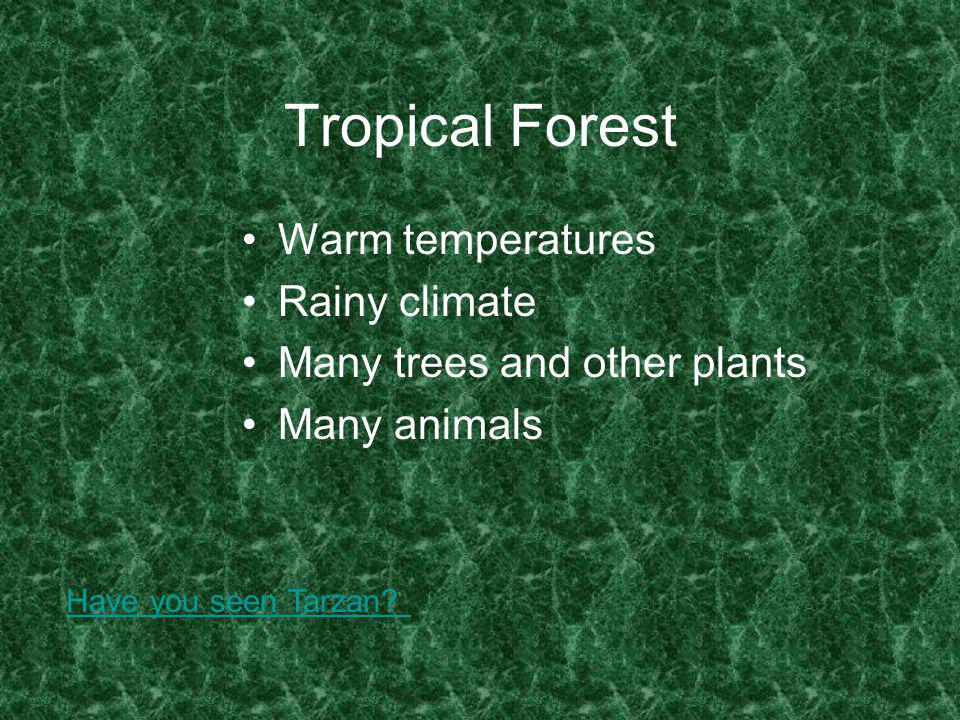 Tropical Forest Warm temperatures Rainy climate