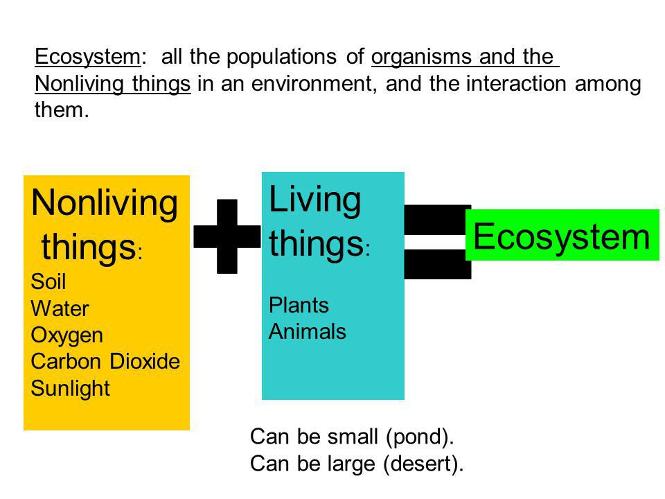 Living things: Nonliving things: Ecosystem + =