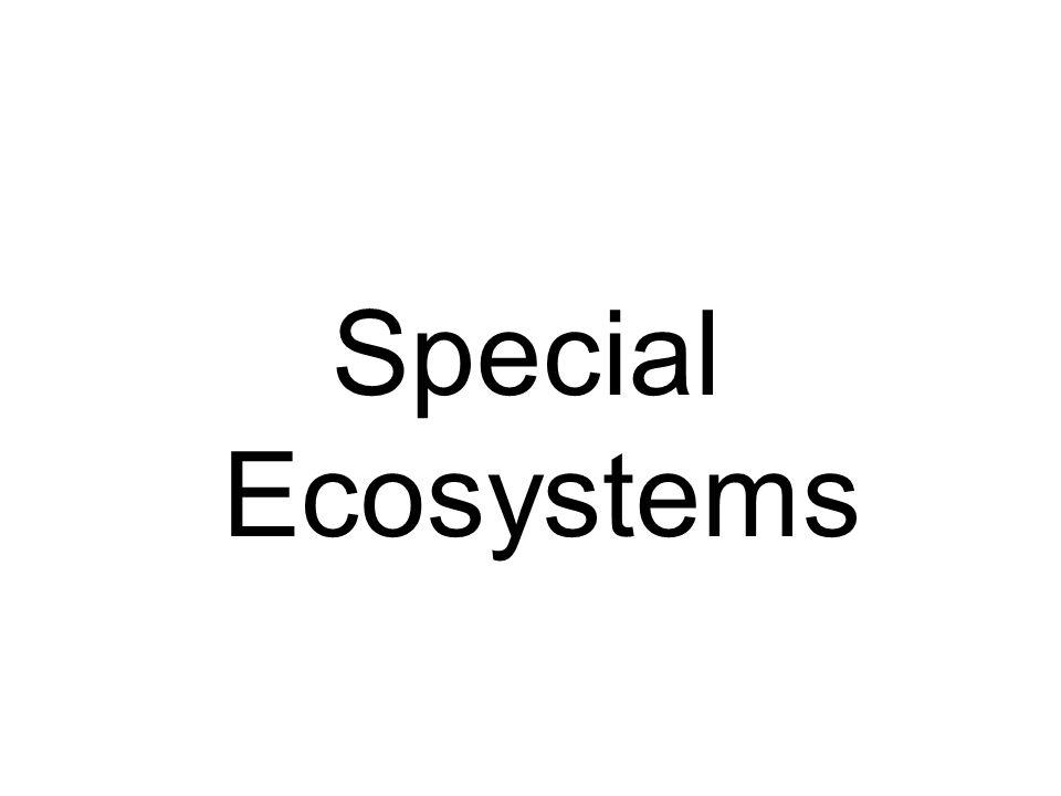 Special Ecosystems