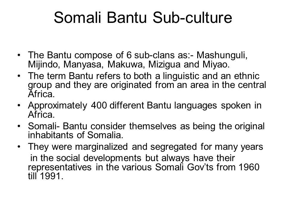 Somali Bantu Sub-culture