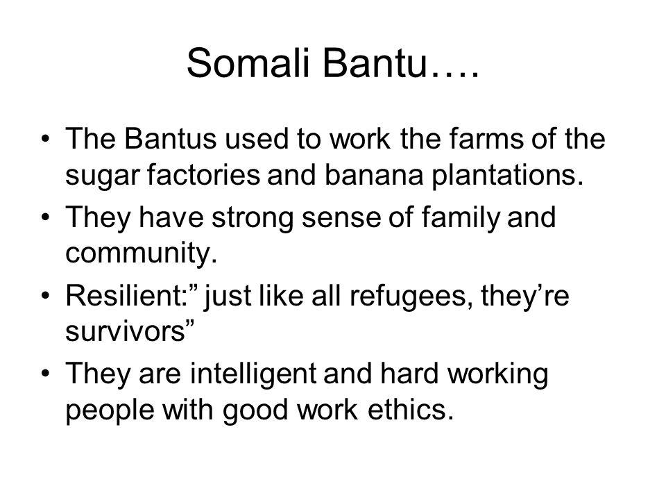 Somali Bantu…. The Bantus used to work the farms of the sugar factories and banana plantations. They have strong sense of family and community.