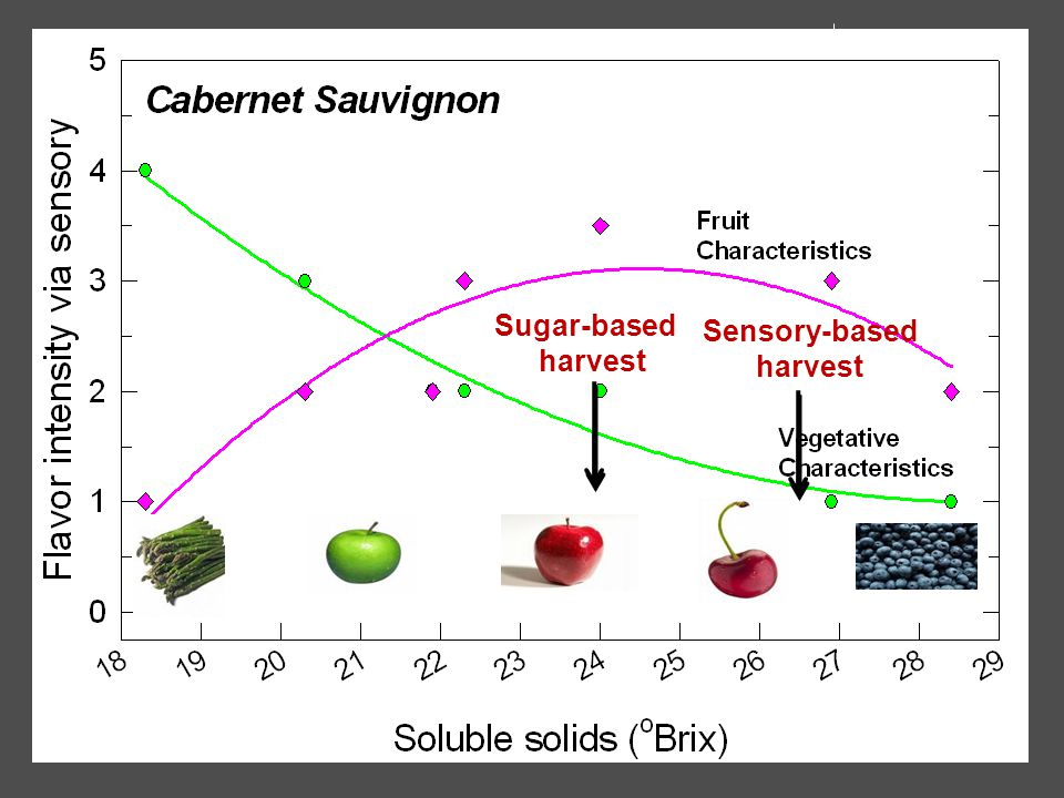 Sugar-based harvest Sensory-based harvest