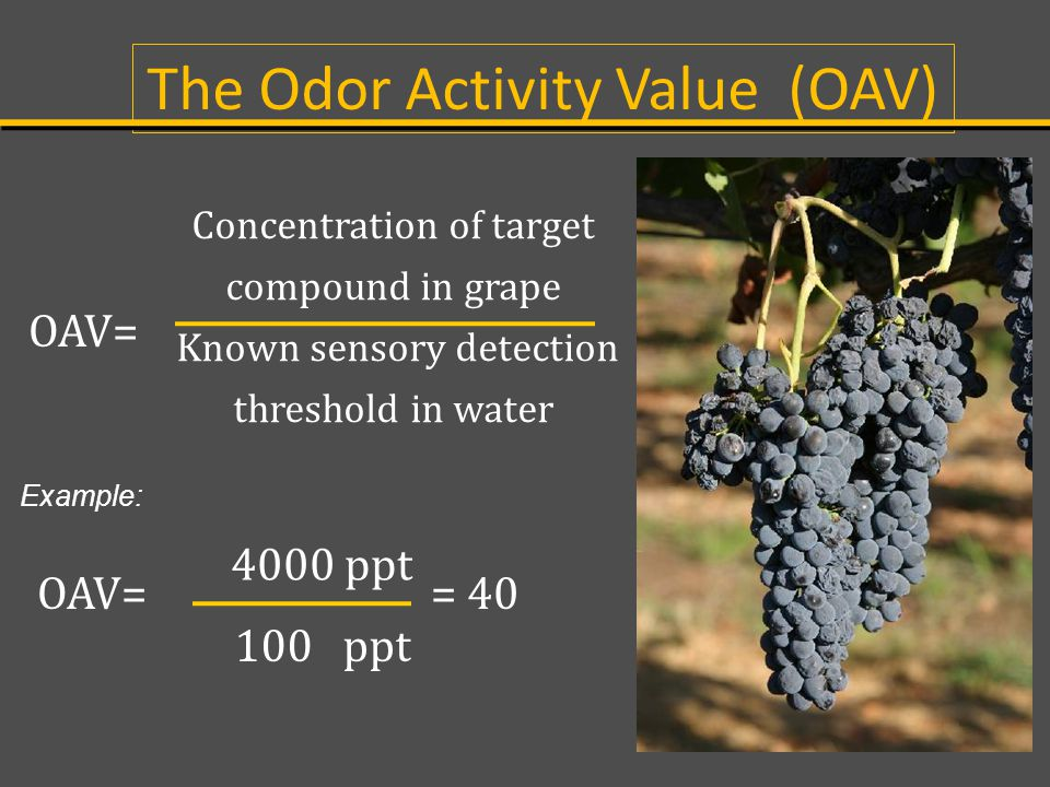 The Odor Activity Value (OAV)