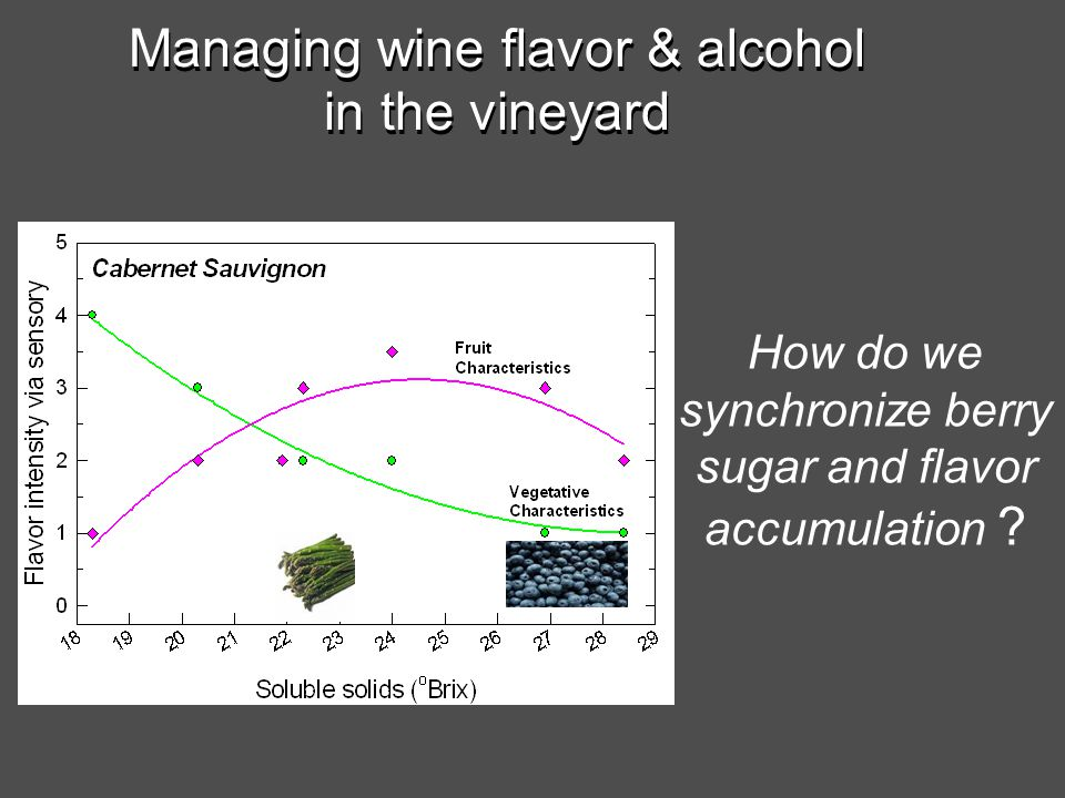 Managing wine flavor & alcohol in the vineyard