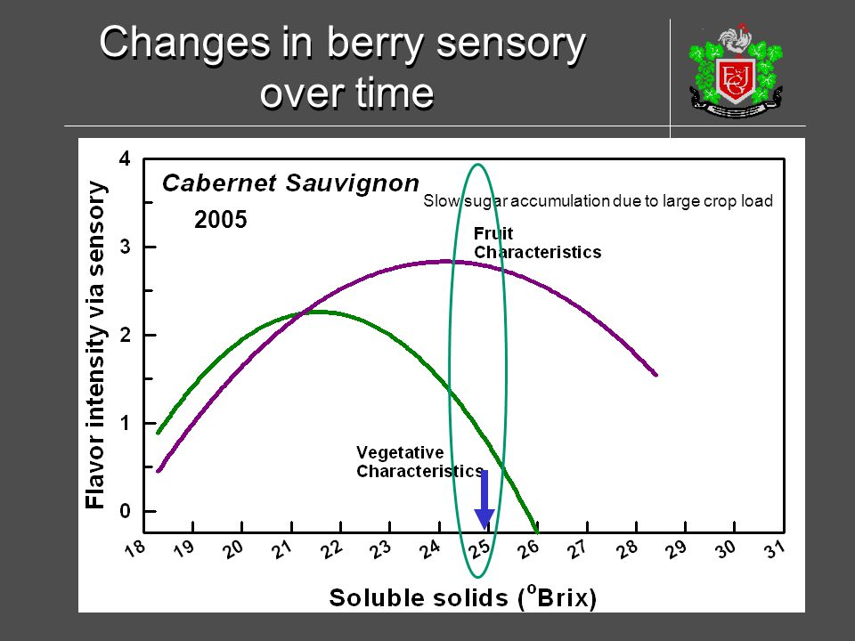 Changes in berry sensory over time