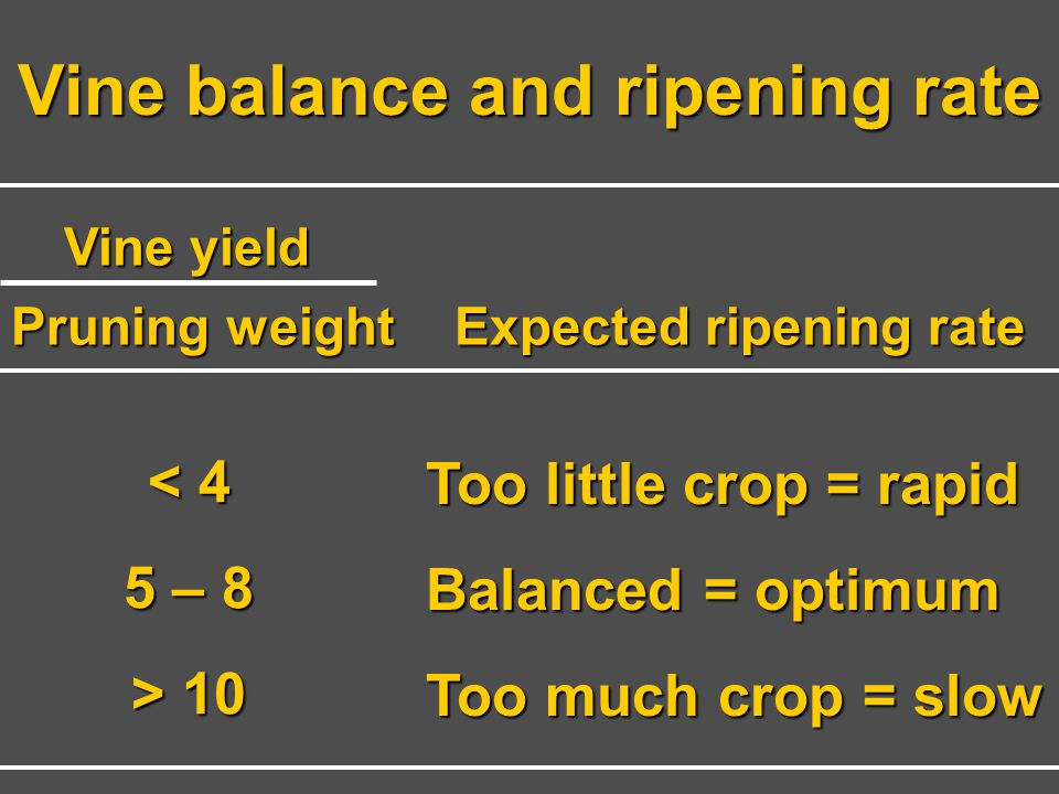 Vine balance and ripening rate Expected ripening rate