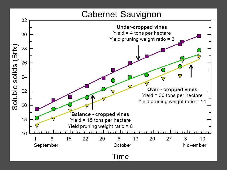 Cabernet Sauvignon Under-cropped vines Yield = 4 tons per hectare