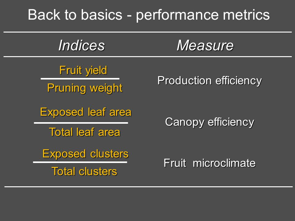 Back to basics - performance metrics