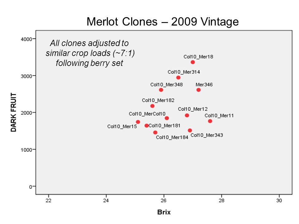 Merlot Clones – 2009 Vintage