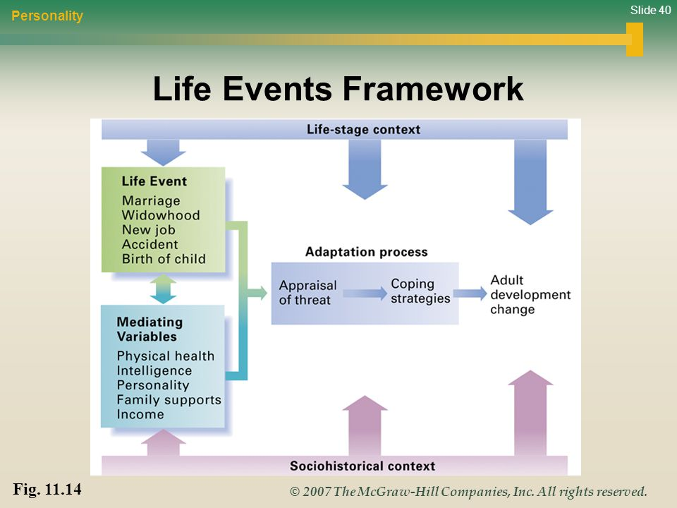 Personality Life Events Framework Fig. 11.14