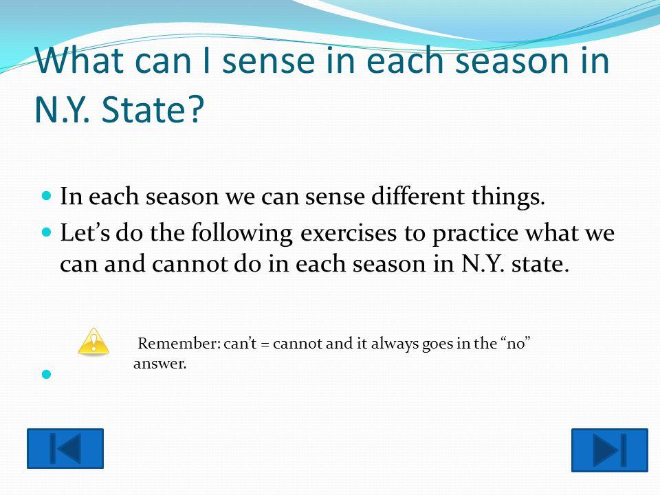 What can I sense in each season in N.Y. State