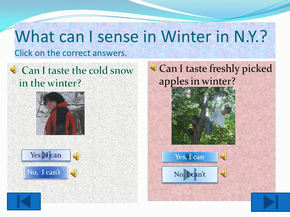 What can I sense in Winter in N.Y. Click on the correct answers.