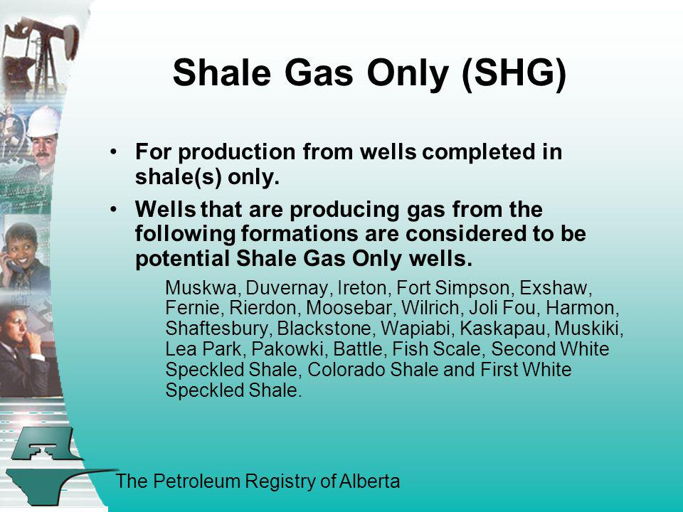 Shale Gas Only (SHG) For production from wells completed in shale(s) only.