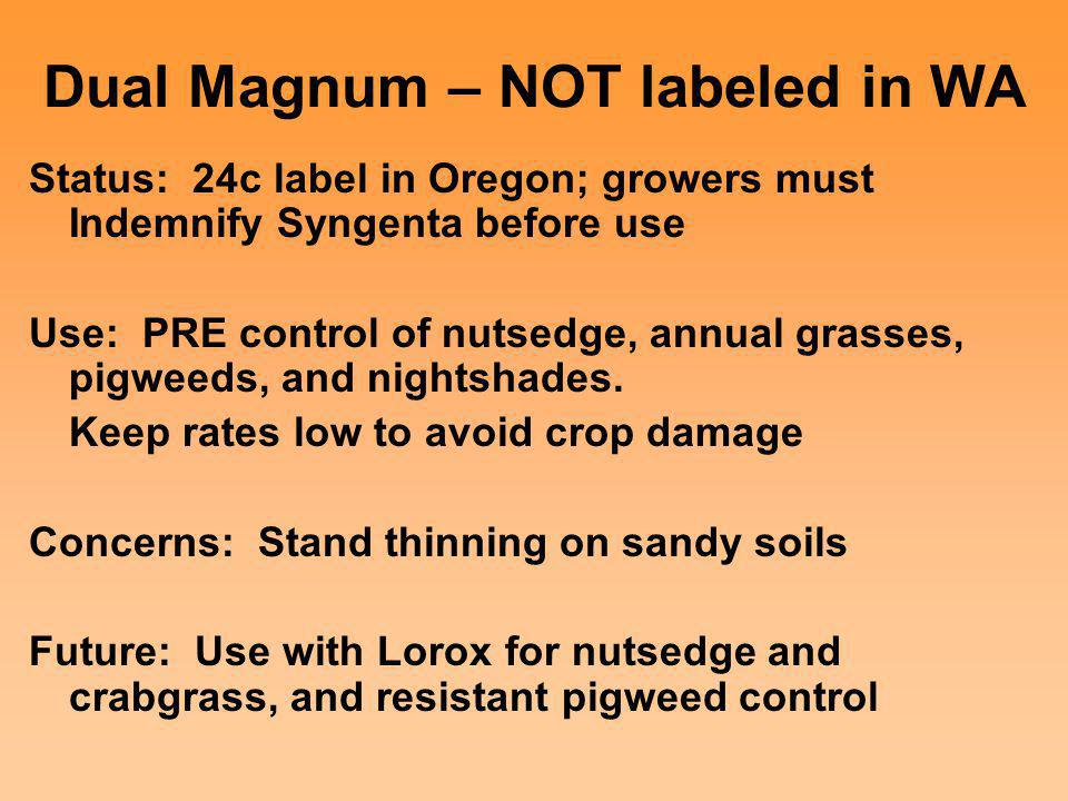 Dual Magnum – NOT labeled in WA