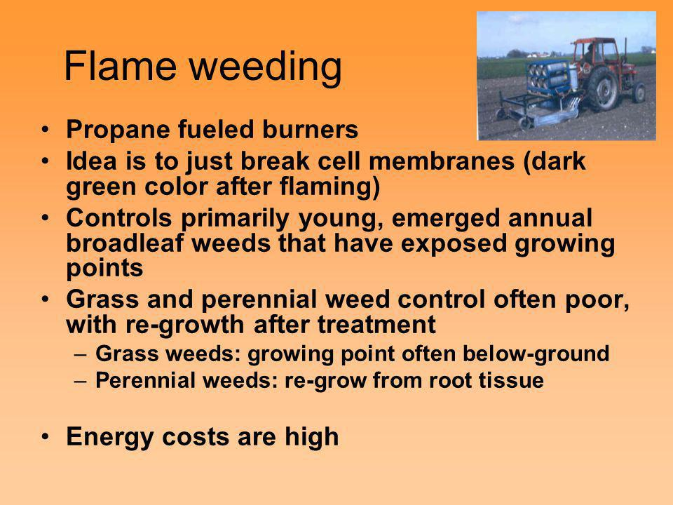 Flame weeding Propane fueled burners