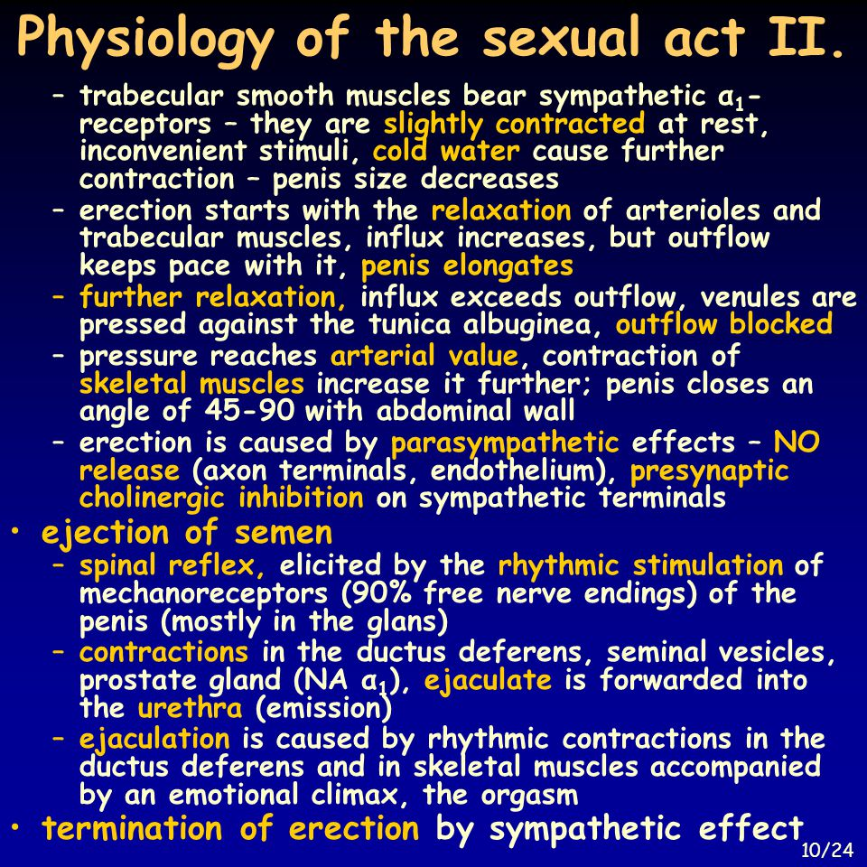 Physiology of the sexual act II.