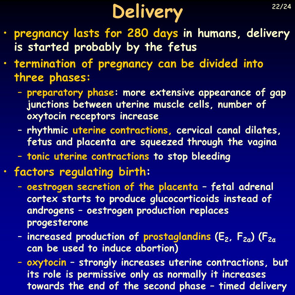 Delivery 22/24. pregnancy lasts for 280 days in humans, delivery is started probably by the fetus.
