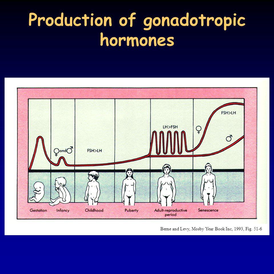 Production of gonadotropic hormones