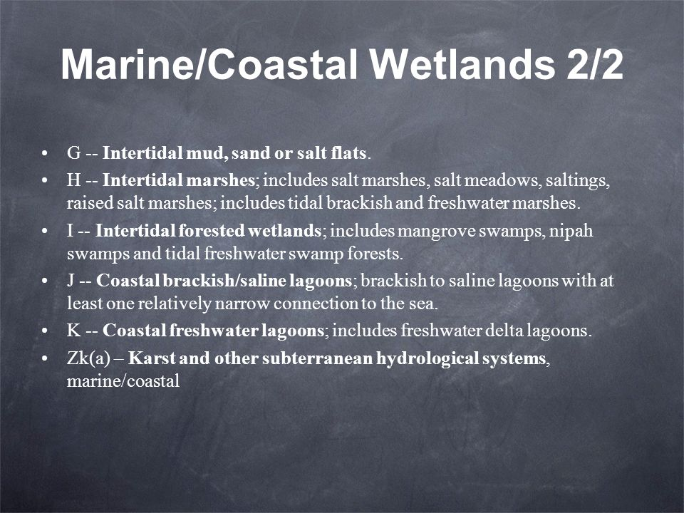 Marine/Coastal Wetlands 2/2