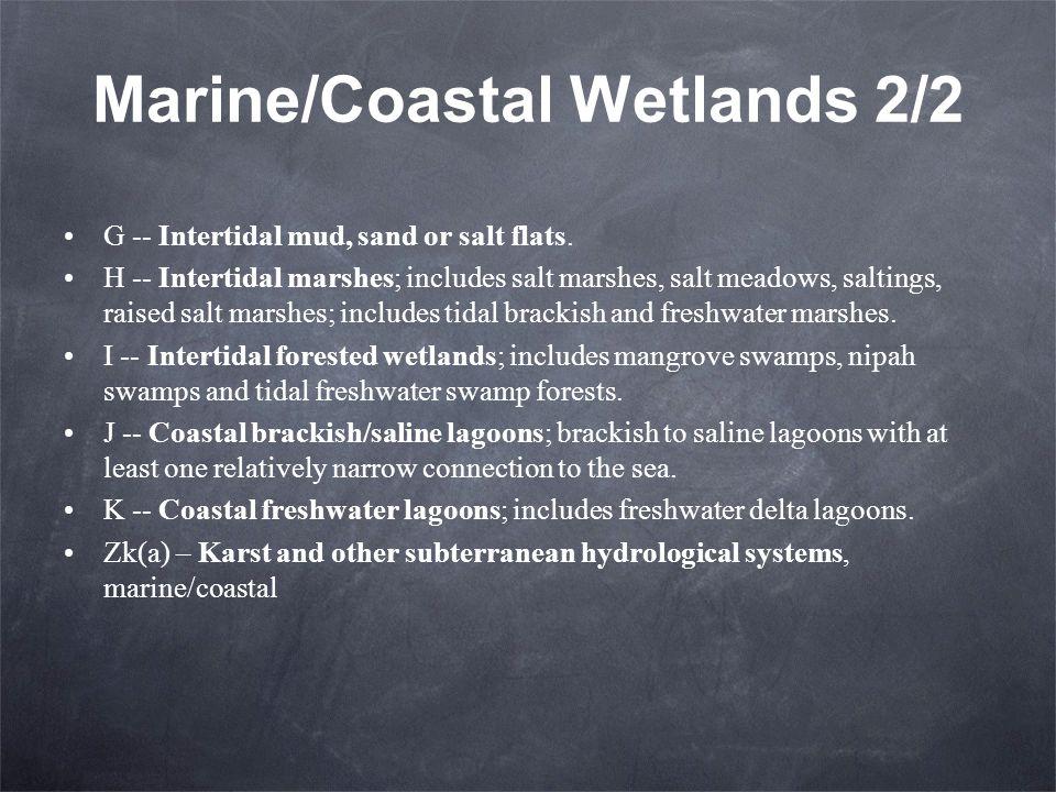 Marine/Coastal Wetlands 2/2