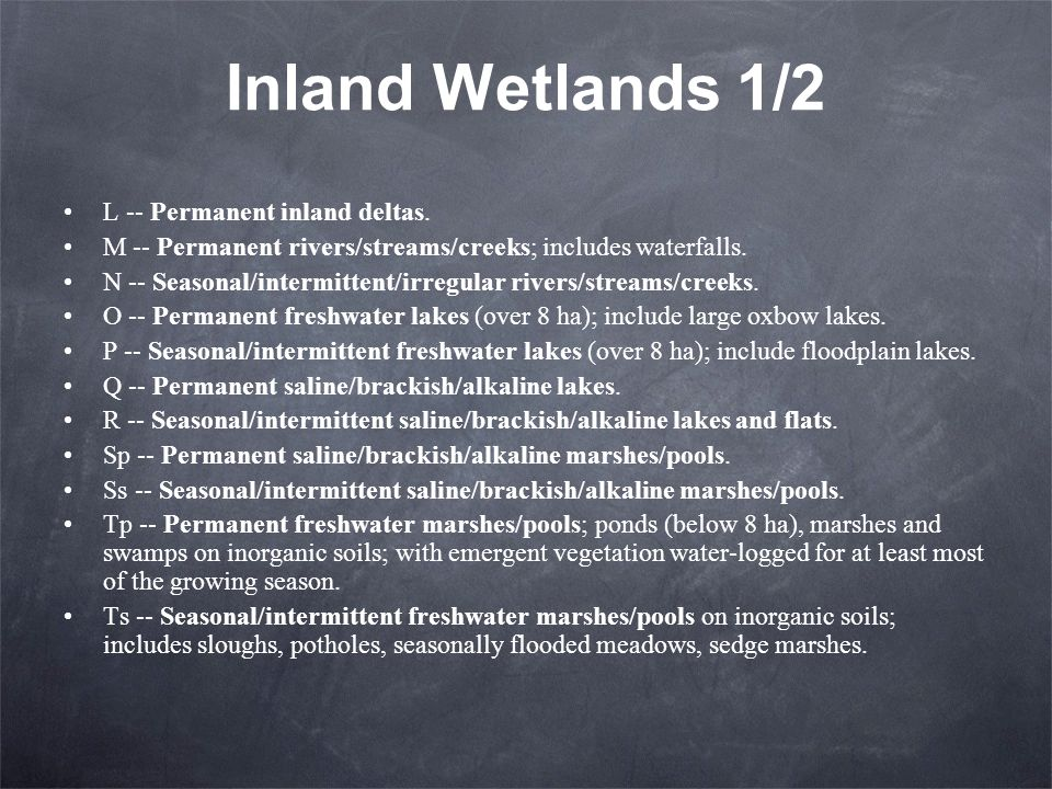 Inland Wetlands 1/2 L -- Permanent inland deltas.