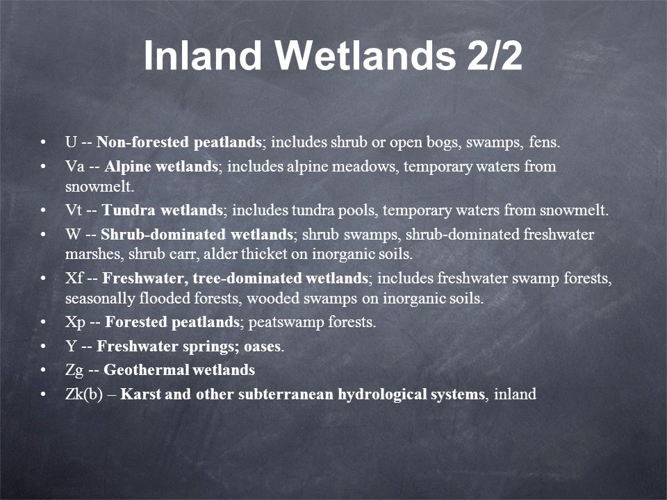 Inland Wetlands 2/2 U -- Non-forested peatlands; includes shrub or open bogs, swamps, fens.
