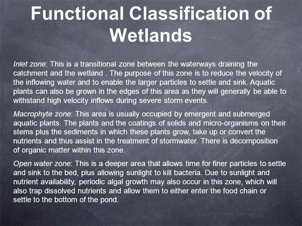 Functional Classification of Wetlands