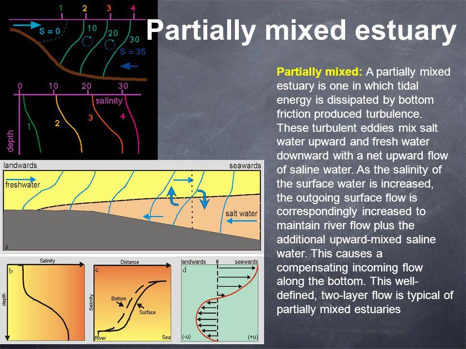 Partially mixed estuary