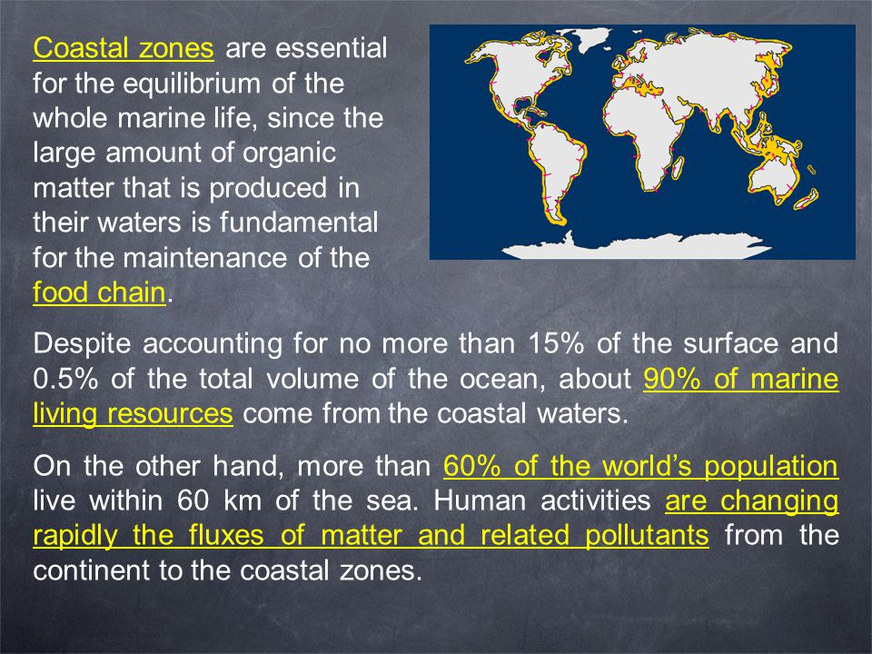 Coastal zones are essential for the equilibrium of the whole marine life, since the large amount of organic matter that is produced in their waters is fundamental for the maintenance of the food chain.