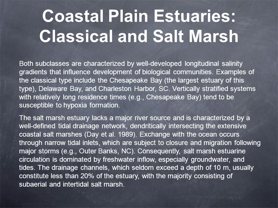 Coastal Plain Estuaries: Classical and Salt Marsh