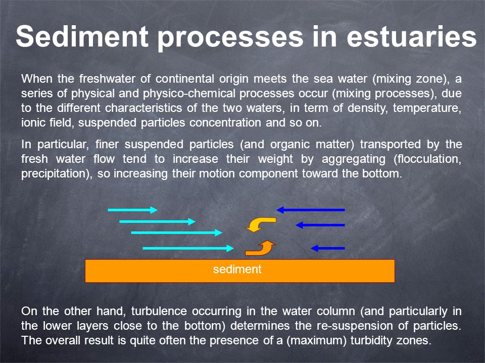 Sediment processes in estuaries